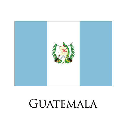 Guatemala flag logo iron on sticker