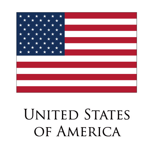 United States of America flag logo iron on sticker