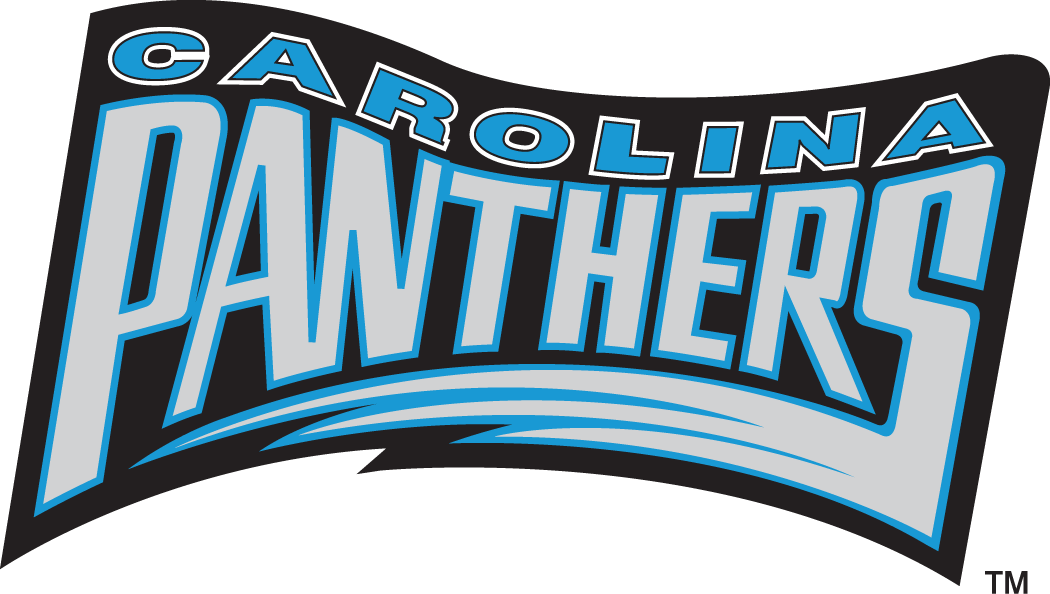 Carolina Panthers 1995 Wordmark Logo 01 decal sticker